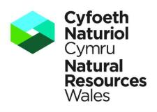 Natural-Resources-Wales-Logo-Edit