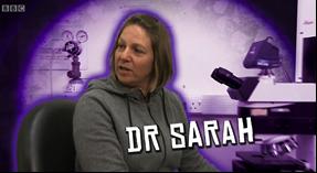 Dr sarah